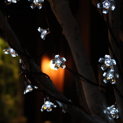 Innoo Tech String Solar Fairy Lights 50 Led Outdoor Garden