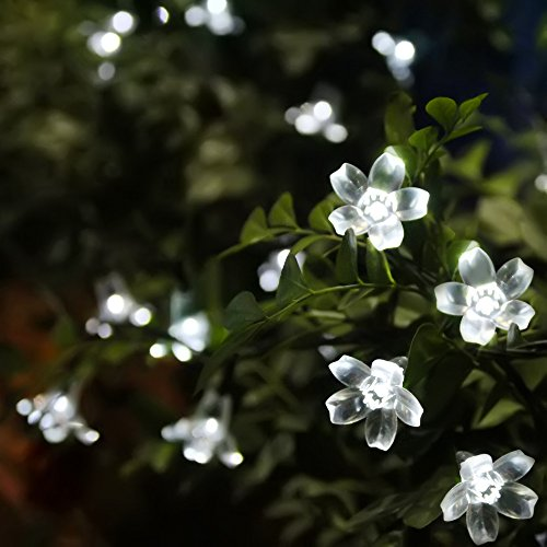50 led white flower blossom lights solar powered some pretty white flower fairy lights mightylinksfo