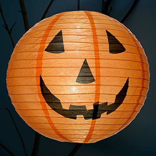 Giant Pumpkin Lantern With 6 White Led Lights Battery Powered
